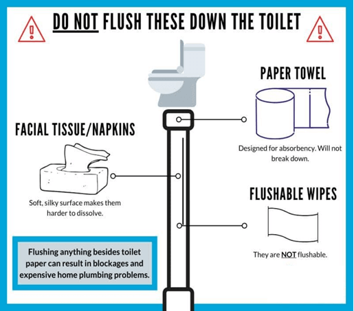 Do not flush these down the toilet: Paper Towels designed for absorbency. Will not break down. Flushable wipes are not flushable. Facil tissues/napkins are soft, silky surface makes them harder to dissolve. Flushing anything besides toilet paper can result in blockages and expensive home plumbing problems.